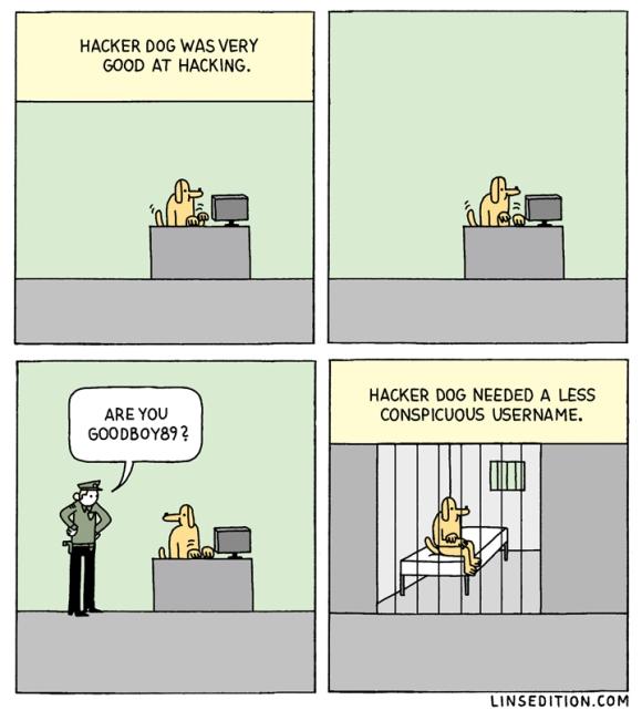 hackerdog